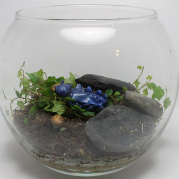 Mini Terrarium Kit With Your Choice of Polymer Clay Pet MADE TO ORDER  *I do not recommend these for live animals.*