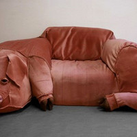 Pig Couch » Funny, Bizarre, Amazing Pictures & Videos