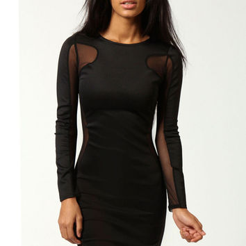 Black Bodycon Mesh Embroidered Long Sleeve Dress