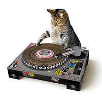 Cat Scratch DJ