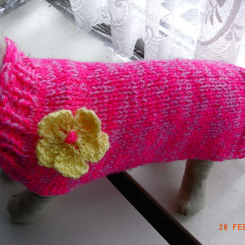 "xxs dog sweater hand knit xs 11.5"" teacup chihuahua etc.xs dog sweater, small dog coat, xs dog clothing"