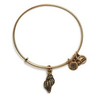 Alex and Ani Conch Shell Charm Bangle Bracelet - Rafaelian Gold Finish