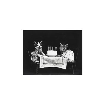 Vintage Kittens Cats Photo Prints TWO VERSIONS ~ Harry Whittier Frees Photograph ~ The Birthday Cake ~ Digital Download ~ LOLCats ~ Party