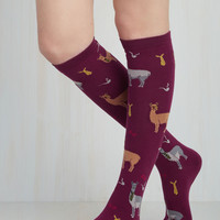 Dapper Duo Socks | Mod Retro Vintage Socks | ModCloth.com