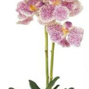Purple Vanda w-Glass Vase Silk Flower Arrangement