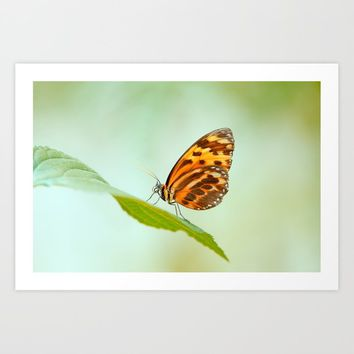Butterfly pattern nature Love Art Print by tanjariedel