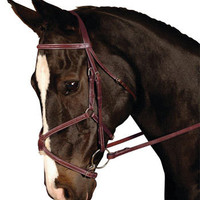 Kincade Padded Figure Eight Bridle