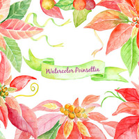 Watercolor Clipart Christmas Poinsettia, Ribbon,Leaf and Berry instant download scrapbook watercolor cards wedding invitations clipart
