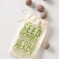 Seed Bombs - Anthropologie.com