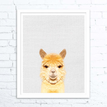 kids room decor, kids wall art Print, Animal Print Poster, Woodlands Nursery, Woodlands, Alpaca Photo, Kids Woodland Poster, Wall Art Prints