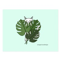 Cute cat hidden behind the palm leaves postcard