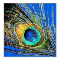 Peacock Feather Eye Shower Curtain> Shower Curtains > Scarebaby Design