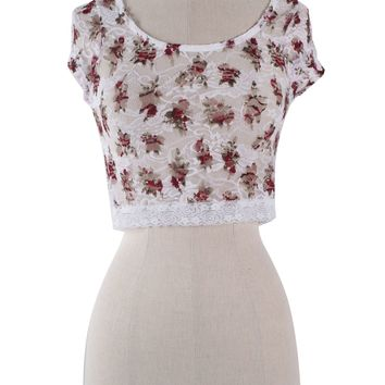 Sexy Round Neck Floral Print Lace Crochet Cropped Top Cap Sleeve Shirt