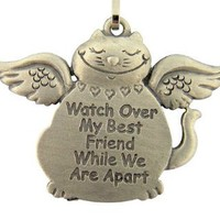 Protect My Pet Watch Over My Best Friend 1 1/4 Inch Silver Tone Cat Collar Charm Tag Medal