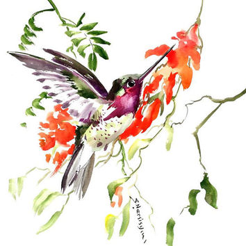 Flying Hummingbird art original watercolor painting 15 x 15 in red purple green bird art hummingbird lover