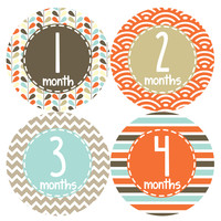 Baby Girl Monthly Baby Stickers Style #379