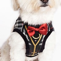 Black White Red Gold Plaid Dapper Boy Suspenders by Dogs of Glamour