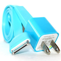 Blue iPhone 4/4s Charger - 1m/3ft iPhone 4/4s Cable and Plug