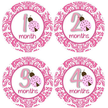 Baby Month Stickers Monthly Onesuit Stickers Hot Pink Ladybug First Year Month Onesuit Sticker Girl Baby Shower Gift Photo Prop -Anya3