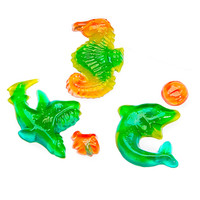 Ocean Shapes Gummy Candy 4-Packs: 18-Piece Box