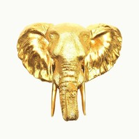 Wall Mount Elephant Head - Gold
