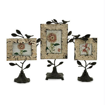 3 Photo Frames - Bird Motif