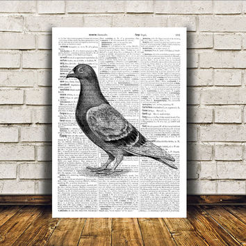 Dictionary print Postal pigeon art Bird poster Modern decor RTA396