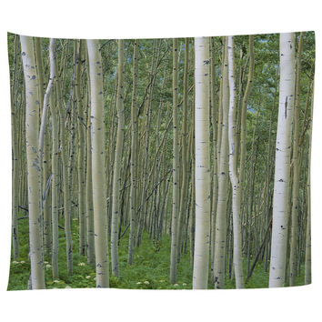 Birch In Uncompahgre National Forest Tapestry