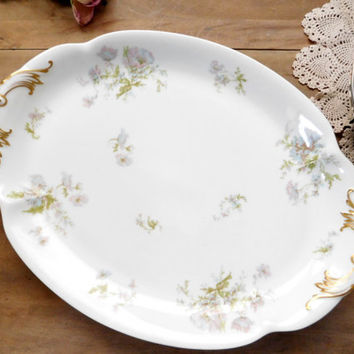 Haviland Limoges Porcelain China Platter