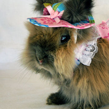 Pink floral hat for your bunny . Protect those little peepers from the sun