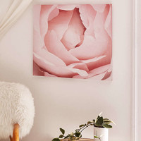 Happee Monkee For DENY Versailles Rose Canvas Wall Art - Urban Outfitters