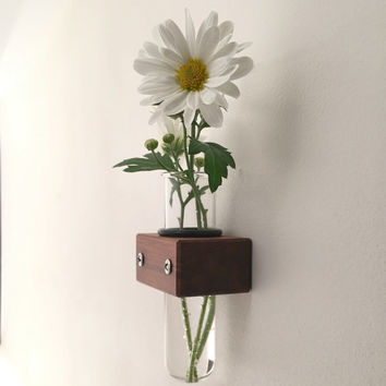 Mini Wall Vase, Test Tube Vase, Small Bud Vase