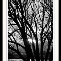 Shine A Little Light On Me Bw Framed Print