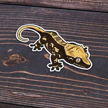 Harlequin Crested Gecko Sticker or Magnet