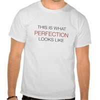 This Is What Perfection Looks Like T-Shirt