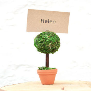 Set Of Four Real Moss Topiary Place Card Holders