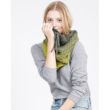 Emaline Ombre Cashmere Infinity Scarf