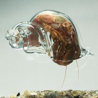 Fancy - Blown Glass Hermit Crab Shell by Robert Dugrenier