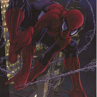 Spider-man in Action Marvel Comics Poster 22x34