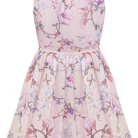 Pink Floral Print Sleeveless Skater Dress