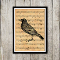 Art poster Bird print Old paper print Animal decor NP167