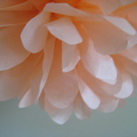Peach - 1 Tissue Pom - Custom DIY Decoration Kit - Birthdays Gender Neutral Baby Revealing Shower