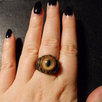 Bad Kitty Bobcat Eye Taxidermy Glass Eye Ring