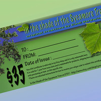 Gift Certificate / Gift Card for 35 Dollars at 'In the Shade of the Sycamore Tree' on ETSY - OOAK Gifts, Pottery & Jewelry
