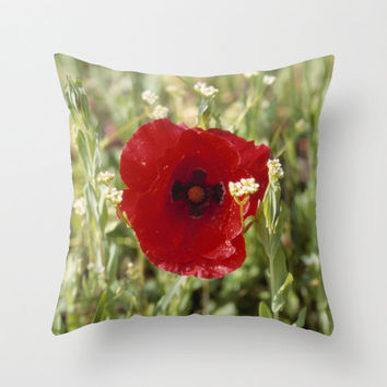 Single Red Poppy Flower Print Pillow, Flower Poppy Art Decorative Throw Pillow or Pillow Cover, Modern Floral Decor, Nature Photography