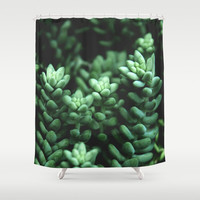Succulent plants Shower Curtain by VanessaGF