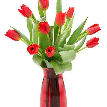 Valentine's Ruby Love Tulips: 10 Red Tulips with Vase