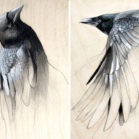 Raven Study Set of Two Art Prints