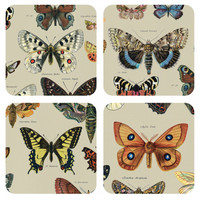 Butterfly Collection Coasters