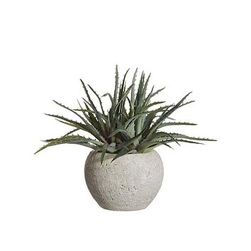 """Plastic Aloe Potted Succulent Plant - 11"""" Tall"""
